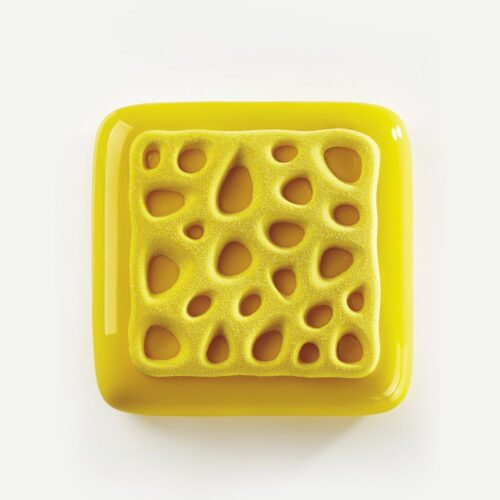 Pavoni Top silicone mould TOP02S SPONGE 80