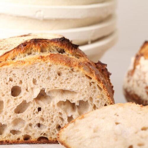 Basket Bread Proofing RD 20x8cmH