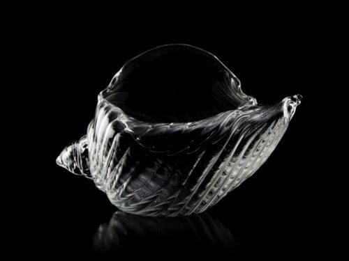 GLASS SEA SHELL 160/0092